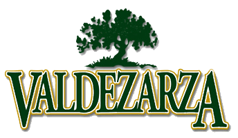 logo-valdezarza